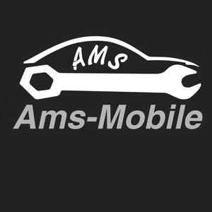 AMS Ltd