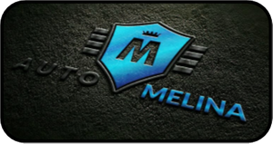 Auto-Melina Team ltd