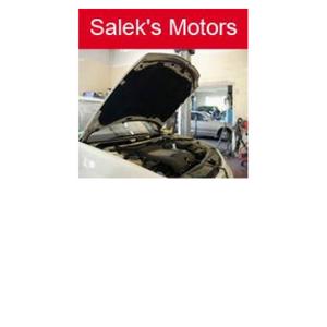 Saleks Motors