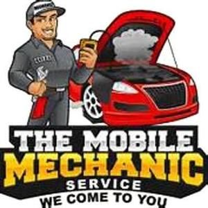 Mobile Mechanic / DPF Doctor  (Work or Home We Come To You)
